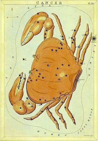 A constelação de Cancer